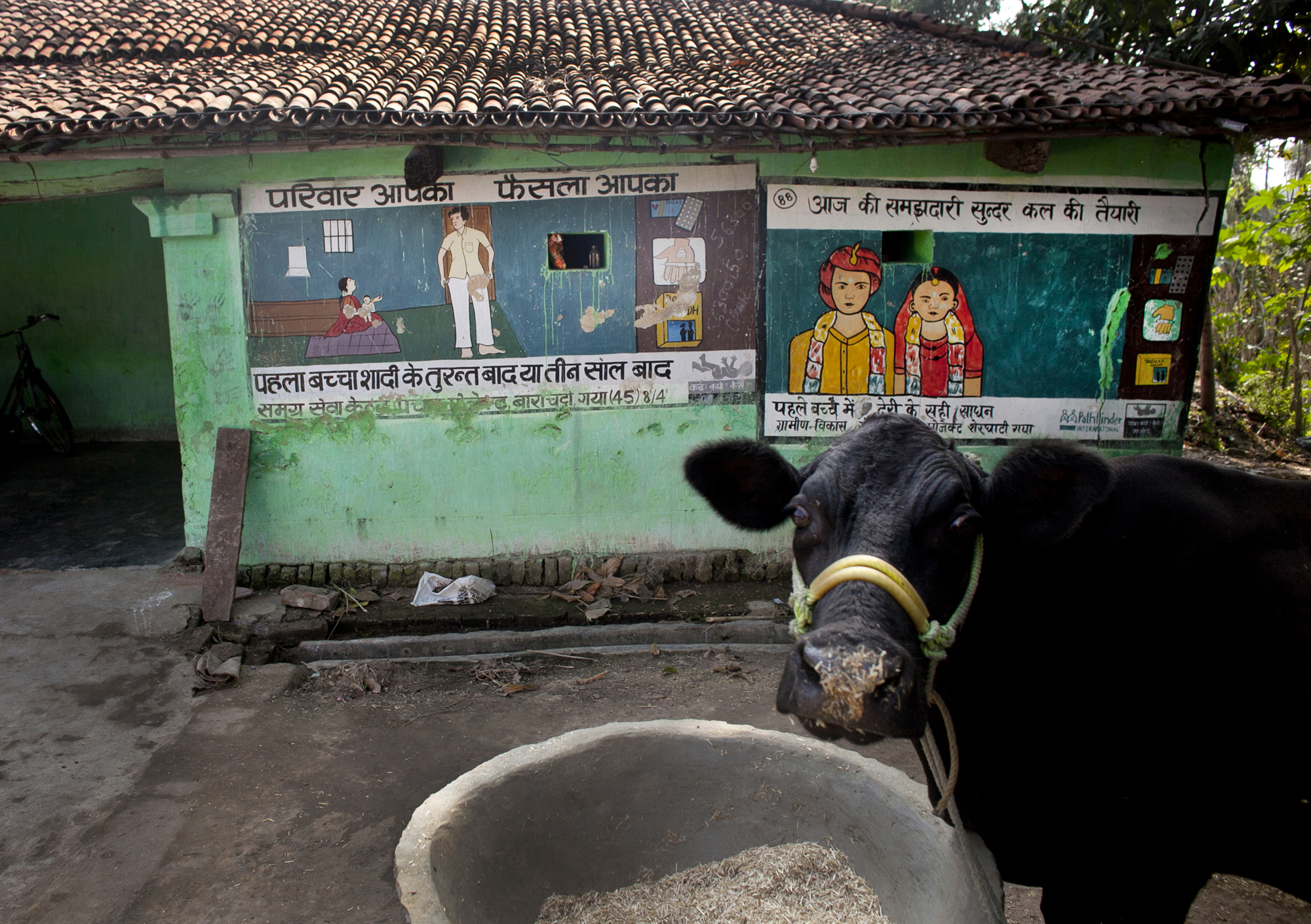 Pathfinder murals around rural Bihar